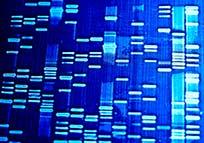 genetic-screening-idaho-falls-obstetrics