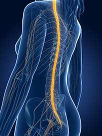 sacral-nerve-stim-idaho-falls